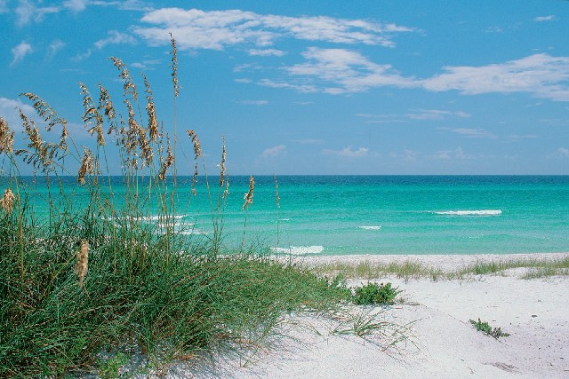 Seaside Beaches on 30A