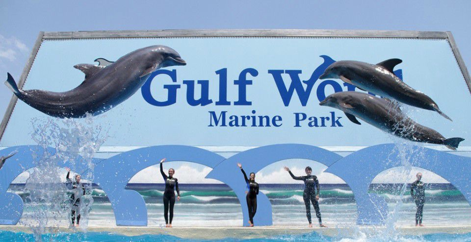 Gulf World - Panama City Beach